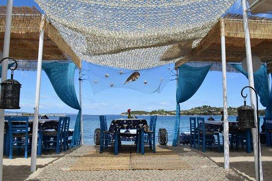 barbouni-sea-food-restaurant
